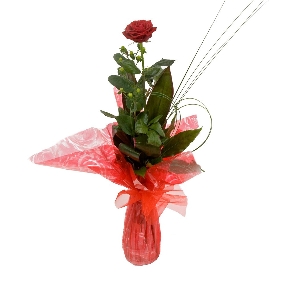 Single red rose in a vase flowers and favours single red rose in a vase floridaeventfo Choice Image